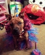 Abby Cadabby Dog Homemade Costume