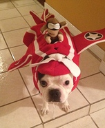 Airplane Costume for Dogs