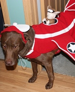 Airplane with Squirrel Fighter Pilot Costume for Dogs