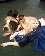 Alice in Wonderland Dog Costume