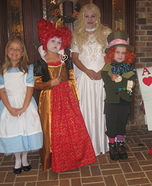 Alice in Wonderland Homemade Costume