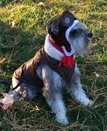 Amelia Earhart Dog Costume