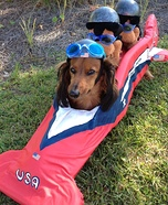 Creative costume ideas for dogs: American Bobsled Team Costume