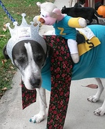 American Pharoah Dog Homemade Costume