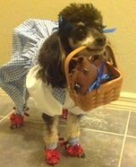 Creative costume ideas for dogs: Dorothy of Wizard of Oz