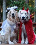 Angel & Devil Dogs Costume