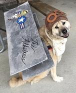 Apollo the WW Fighter Pilot Homemade Costume
