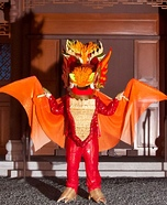Asian Dragon Homemade Costume