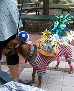 Astro Doggie Costume