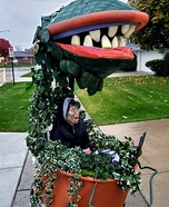 Audrey 2 - Little Shop of Horrors Homemade Costume