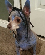 Creative costume ideas for dogs: Avatar's Neytiri