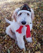 Aviator Dog Costume