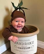 Baby Mandrake Homemade Costume