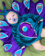 Newborn Baby Peacock Costume