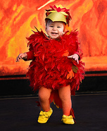 Baby Phoenix Homemade Costume