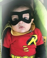 Baby Robin Homemade Costume