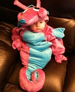 Seahorse Costume for Babies