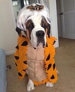 Bam Bam Dog Homemade Costume