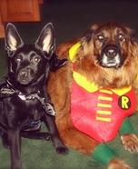 Bat Dog and Robin Homemade Costume