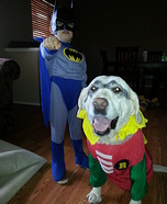 Batman and Robin Homemade Costume