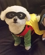 Batman and Robin Dogs Costume