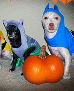 Batman, Robin, and Catwoman Costums Dogs