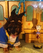 Beauty and the Beast. Dogs Homemade Costume