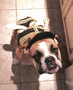 Bee Dogs Costume
