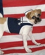 U.S. Navy Homemade Costume