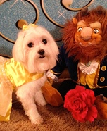 Belle from Beauty and the Beast Pet Costume
