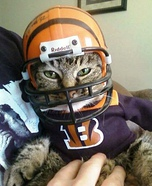 The Bengals NEW MASCOT Costume