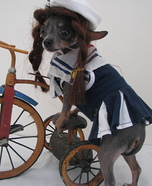 Bicycle Dog Homemade Costume