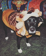 Big Scary Lion Dog Costume