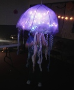 Bioluminescent Jellyfish Halloween Costume