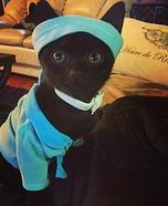 Blue Ninja Warrior Cat Homemade Costume