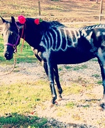 Boney Pony Homemade Costume
