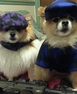 Bonnie and Clyde Dogs Homemade Costume