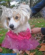 Bonnie Boo-Boo Costume