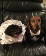 Bride & Groom Homemade Costume