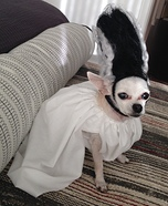 Bride of Frankenstein Dog Homemade Costume