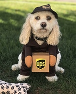 Brody the UPS Helper Costume