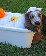 Bubble Bath Dog Homemade Costume