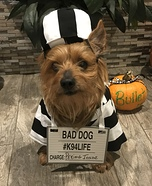 Bullet the Prisoner Costume