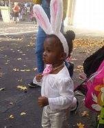 Bunny Homemade Costume