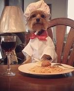 Buon Appetito Homemade Costume