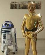 C3PO and R2D2 Homemade Costume