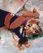 DIY Captain Jack Sparrow Dog Costume