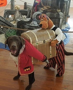 Creative costume ideas for dogs: Dog Pirate Carrying Treasure Costume
