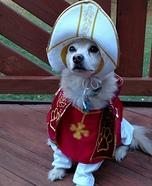 Cardinal Cody Costume