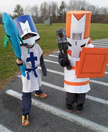 Castle Crashers Homemade Costume